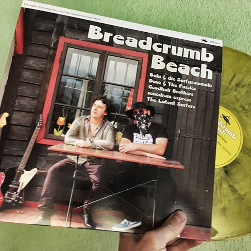 Breadcrumb Beach (LP, Plan 9 Trash Records, 2018)